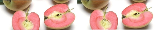 rose apple double